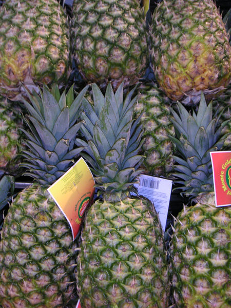 File:Pineapple display.jpg