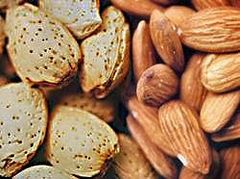 Almonds in and out of shell